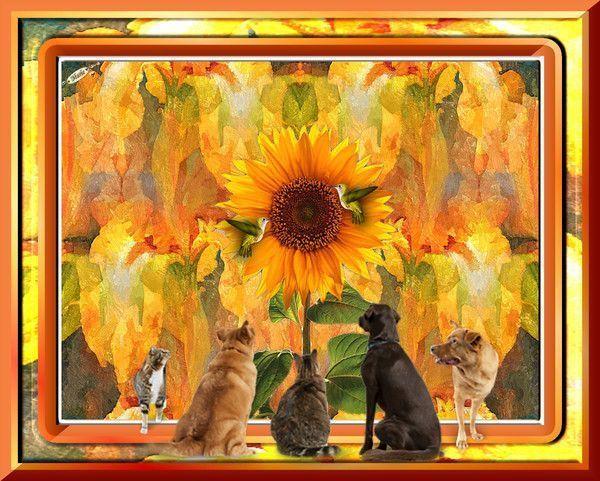 Image du Blog marietubes.centerblog.net